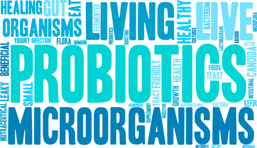 The 6W's of Taking Probiotics-part 1