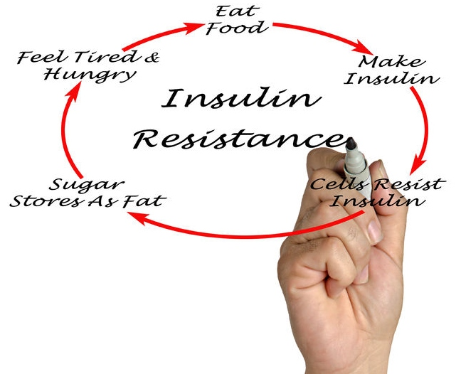 Balancing Blood Sugar and Insulin Resistance